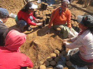 Copade apoya pequeñas organizaciones productoras y gestiona las ventas de productos de Comercio Justo, ecológicos y de economía solidaria