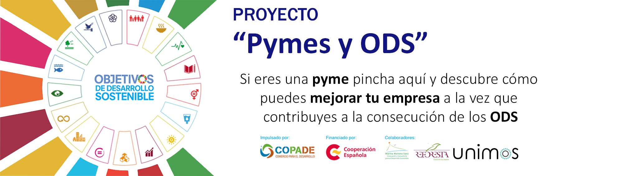proyecto para Pymes y ODS Copade