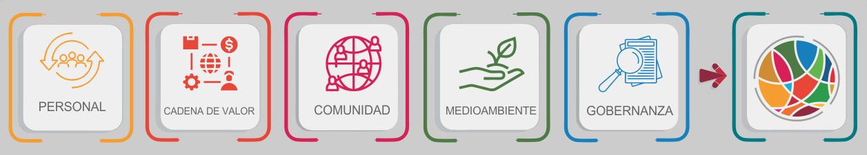 Medición de la Huella Social - Fundación COPADE